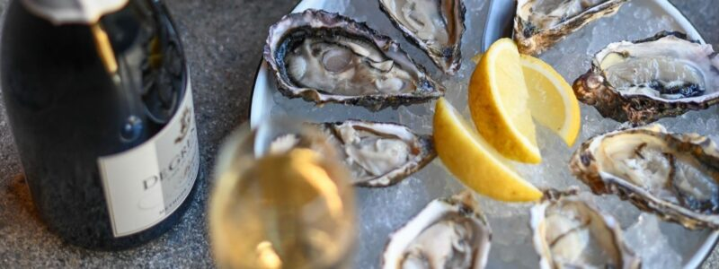 Hartbeespoort Opens New Oyster Route